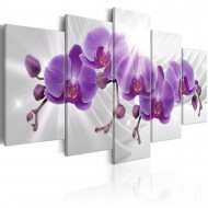 Tableau  Abstract Garden Purple Orchis