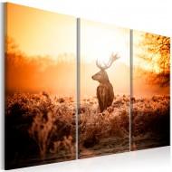 Tableau  Deer in the Sun I