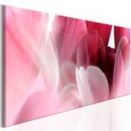 Tableau  Flowers Pink Tulips