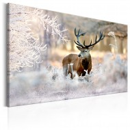 Tableau  Deer in the Cold