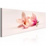 Tableau  Beautiful Magnolias