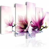Tableau  Fleurs roses magnolias