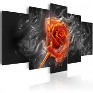 Tableau  Fiery Rose