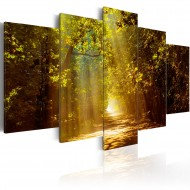 Tableau  Forêt ensoleillée