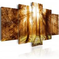 Tableau  Forest Illumination