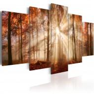 Tableau  Forest Fog