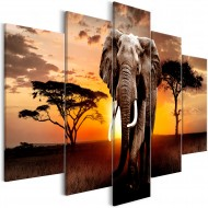 Tableau  Wandering Elephant (5 Parts) Wide