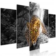 Tableau  Leopard Lying (5 Parts) Wide Grey