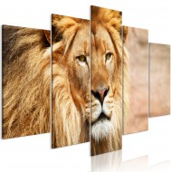 Tableau  The King of Beasts (5 Parts) Wide Orange