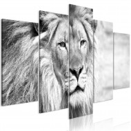 Tableau  The King of Beasts (5 Parts) Wide Black and White