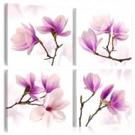 Tableau  Magnolias charmantes