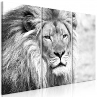 Tableau  The King of Beasts (3 Parts) Black and White