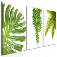 Tableau  Beautiful Palm Trees (3 Parts)