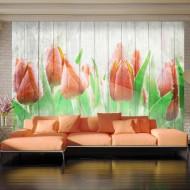 Papier peint  Red tulips on wood
