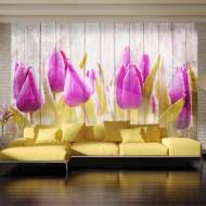 Papier peint  Autumn tulips