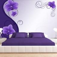 Papier peint  Grace of violet orchids