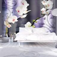 Papier peint  Orchids