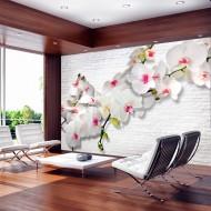 Papier peint  Wall full of orchids