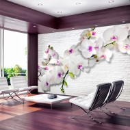 Papier peint  Wall full of orchids II