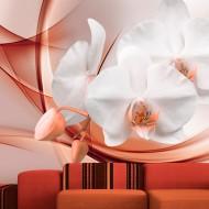 Papier peint  Orchid blossom II