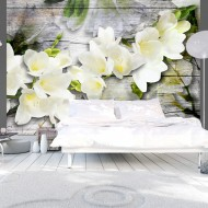 Papier peint  White fressia on wood