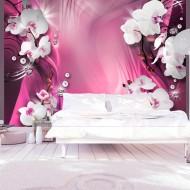 Papier peint  Pink Explosion of Color