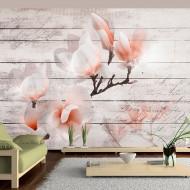 Papier peint  Subtlety of the Magnolia