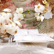 Papier peint  Desert Orchid