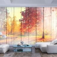 Papier peint  Autumn Sun