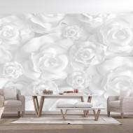 Papier peint  Plaster Flowers