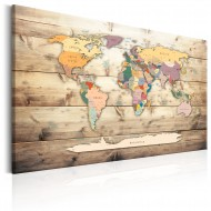 Tableau  World Map Colourful Continents