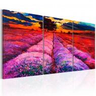 Tableau  Land of Colours