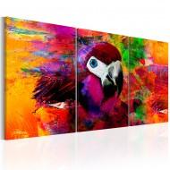 Tableau  Jungle of Colours