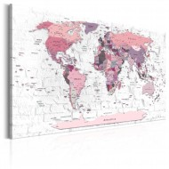 Tableau  Pink Frontiers
