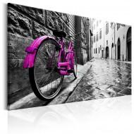 Tableau  Vintage Pink Bike