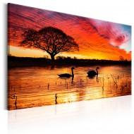 Tableau  Swan Lake