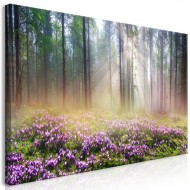 Tableau  Purple Meadow (1 Part) Wide