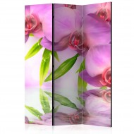Paravent 3 volets  Orchid Spa [Room Dividers]