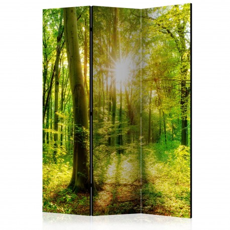 Paravent 3 volets  Forest Rays [Room Dividers]