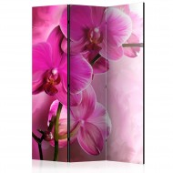 Paravent 3 volets  Pink Orchid [Room Dividers]