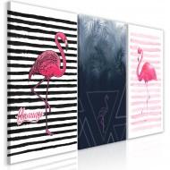 Tableau  Flamingos (Collection)