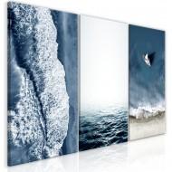 Tableau  Seascape (Collection)