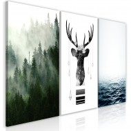 Tableau  Chilly Nature (Collection)