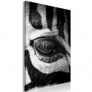 Tableau  Zebra Eye (1 Part) Vertical