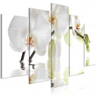 Tableau  Wonderful Orchid (5 Parts) Wide