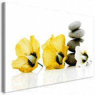 Tableau  Calm Mallow (1 Part) Yellow
