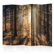 Paravent 5 volets  Autumnal Forest II [Room Dividers]