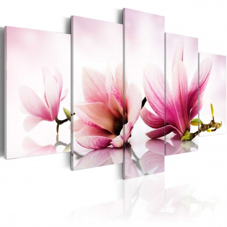 Tableau  Magniolias fleurs roses
