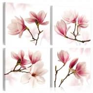 Tableau  Romantic Pink