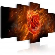 Tableau  Rose brûlante